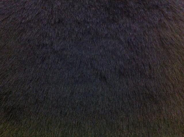 Faux Fur – Black