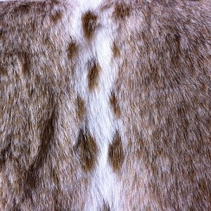 Faux Fur – Tan Lynx