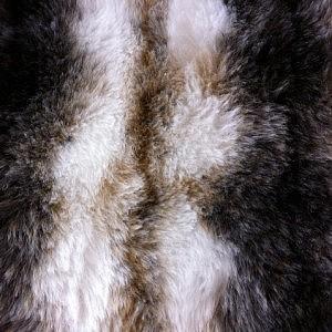 Faux Fur – White Italian Wolf