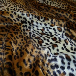 Ponyskin – Cheetah